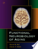 Functional Neurobiology of Aging