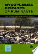 Mycoplasma Diseases of Ruminants