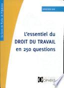 L Essentiel Du Droit Du Travail En 250 Questions
