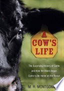A Cow s Life