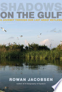 Shadows On The Gulf : into the waters of the...