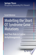 Modelling the Short QT Syndrome Gene Mutations