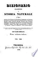 Dizionario classico di storia naturale de     Andouin  Isid  Bourdon      e Bory de Saint Vincent  Prima trad  italiana