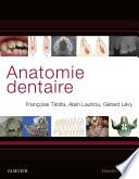 illustration du livre Anatomie dentaire