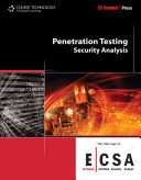 Penetration Testing: Security Analysis