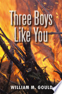 Three Boys Like You book