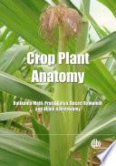 Crop Plant Anatomy Crop Management Anatomical Descriptions Of The Major Crop