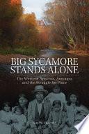 Big Sycamore Stands Alone