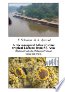 A microscopical Atlas of some tropical Lichens from SE-Asia (Thailand, Cambodia, Philippines, Vietnam)