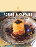 Acorns   Cattails