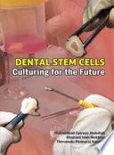 Dental Stem Cells Culturing For The Future Penerbit Usm