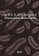 To Kill A Mockingbird Classroom Questions