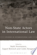 Non State Actors in International Law