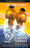 Book Double Trouble