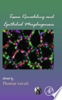 Tissue Remodeling and Epithelial Morphogenesis