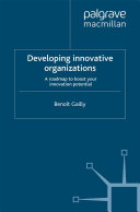 Developing Innovative Organizations
