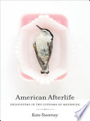 American Afterlife