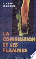 Combustion et les flamme