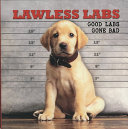 Lawless Labs