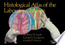 Histological Atlas Of The Laboratory Mouse book