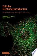 Cellular Mechanotransduction