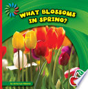 What Blossoms in Spring  Book PDF
