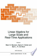 Linear Algebra for Large Scale and Real Time Applications