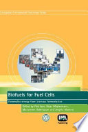 Biofuels For Fuel Cells : ...