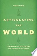 Articulating the World Book PDF