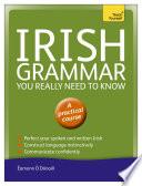 Irish Grammar You Really Need to Know  Teach Yourself