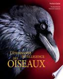 illustration du livre L'étonnante intelligence des oiseaux