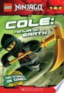 Lego Ninjago Chapter Book Cole Ninja Of Earth