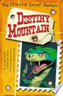 Charlie Small Destiny Mountain