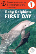 Baby Dolphin S First Day