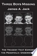 Three Boys Missing book