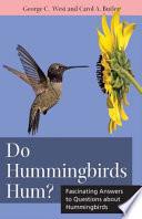 Do Hummingbirds Hum