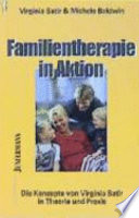 Familientherapie in Aktion