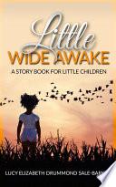 Little Wide Awake   A story book for little children