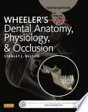 Wheeler s Dental Anatomy  Physiology and Occlusion