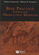 Beef Practice