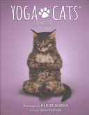 Yoga Cats Deck Book Set