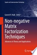 Non Negative Matrix Factorization Techniques