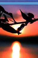Leaf Sunset Journal