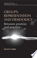 Groups  Representation and Democracy