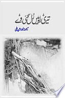 Teri Rah Mein Rul Gai Way Urdu Novel