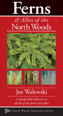 Ferns of the North Woods