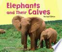 Elephants and Their Calves