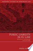 Public Liability in EU Law