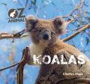 Koalas OZ Animals