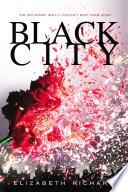 Black City by Elizabeth Richards